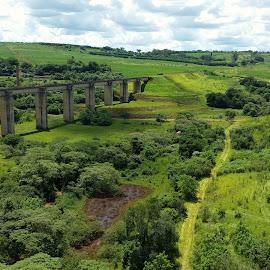 Cordeiropolis SP Brazil  by Marcello Toldi - Landscapes Prairies, Meadows & Fields