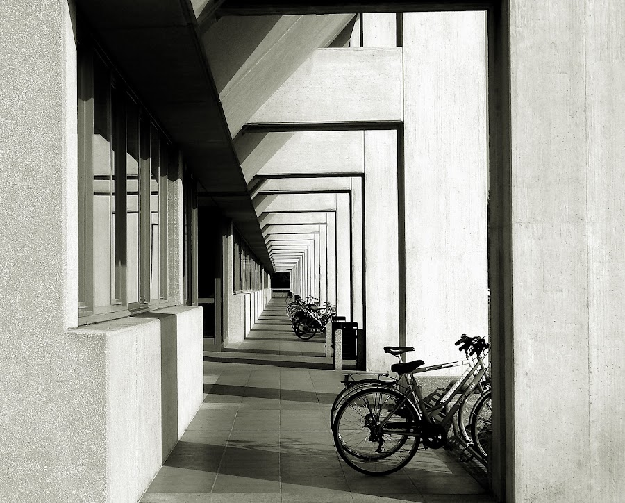 by Luca Piccini Basile - Black & White Buildings & Architecture (  )