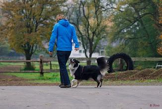 Photo: Fuß-gehen ohne Leine
