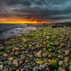 Scotland by Bohdan Šimeček - Landscapes Travel