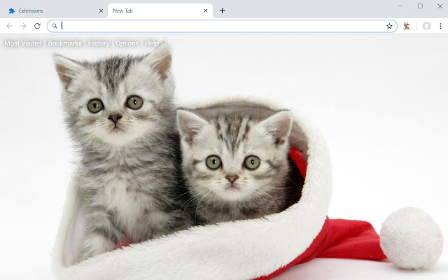 Christmas Cats Dogs Wallpaper Cat Dog Theme