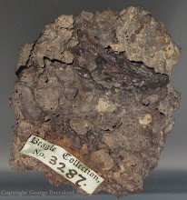 Photo: Basalt specimen collected by Charles Darwin on the Beagle voyage from Isla Genovesa, Galapagos Islands. Housed in Sedgewick Museum, Cambridge. Copyright George Beccaloni