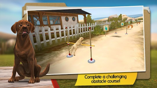DogHotel – Play with dogs MOD Apk (Unlocked/Unlimited Coins) 2