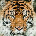 Puzzle Zoo Icon