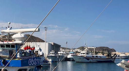 El Ayuntamiento eleva a la Junta la propuesta del sector pesquero del municipio