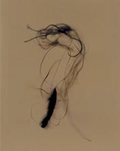 Photo: © Olivier Perrot Photogramme « Bouts de ficelle beige » 40x50cm sous cadre Tirage numérique sur papier chiffon, 2008 Ref 150 01/05 operrot_03_S02_ref150 www.olivier-perrot.com