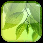 Leaf Live Wallpaper