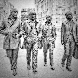 Fab Four by Stephen Davis - Digital Art Things