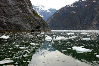 Photo: Tracy Arm, ice from Sawyer Glaciers