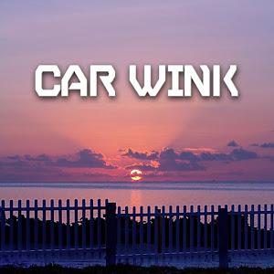 のカスタム事例画像 CAR  WINK (カーウインク)さんの2018年07月03日19:31の投稿