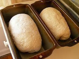 Place loaves seam sides down in 2 greased loaf pans 9x5x3 or 8 1/2...