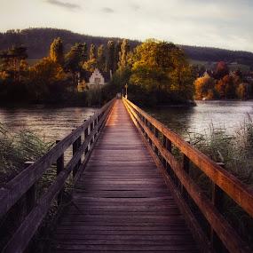 A little monastery on a little Island by Konstanze Singenberger - Buildings & Architecture Bridges & Suspended Structures ( lake constance, bridge, rhine river, river, island )
