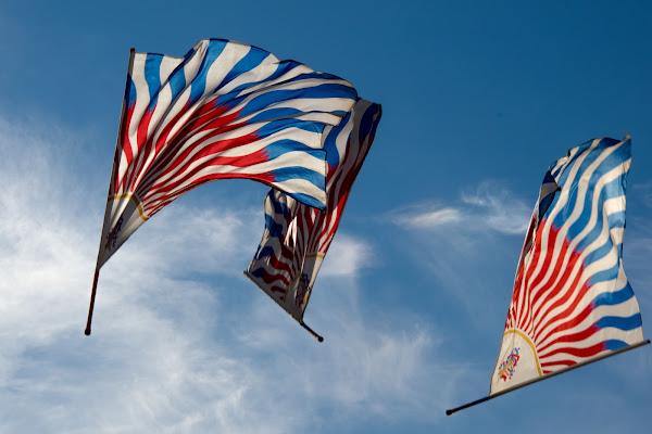 flags di Camillo G