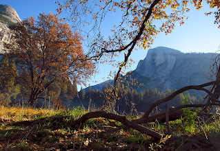 Photo: Same meadow just after sunrise #2761