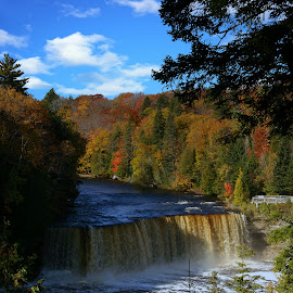 Tahquamenon Falls by Bill Diller - Landscapes Waterscapes ( tahquamenon river, tahquamenon falls, michigan, nature, water falls, autumn colors, tranquil, peaceful, water fall, calm, fall, calmness, tranquility, upper falls of the tahquamenon river, autumn, river )