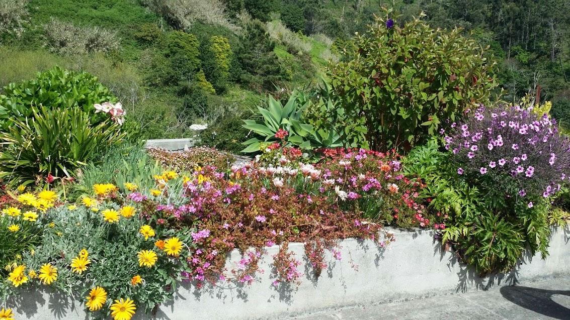 Farbiger Garten