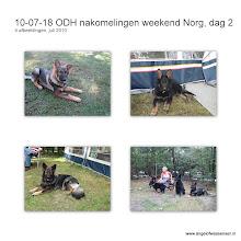 Photo: Dag twee in Norg en opnieuw is het volop genieten!
