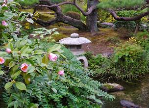 Photo: Best Samurai garden (Kamakura)
