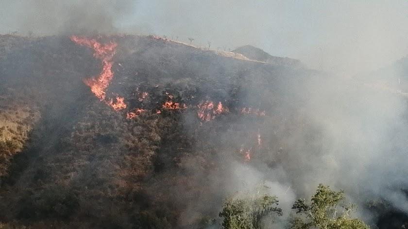 El incendio en la tarde de ayer en el municipio de Líjar.