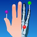 e-Anatomy icon