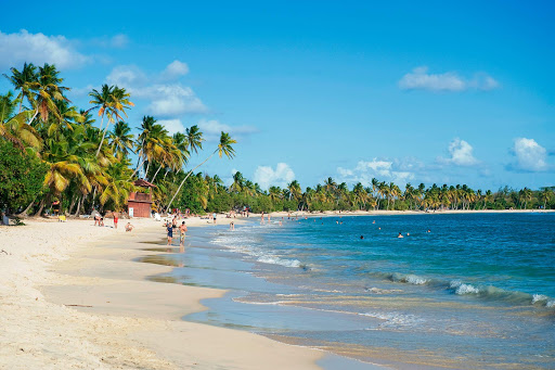 Grande-Anse-des-Salines.jpg - Grand Anse d'Arlet is one of the more popular beaches on Martinique.