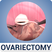 Ovariectomy in Dogs (Free)