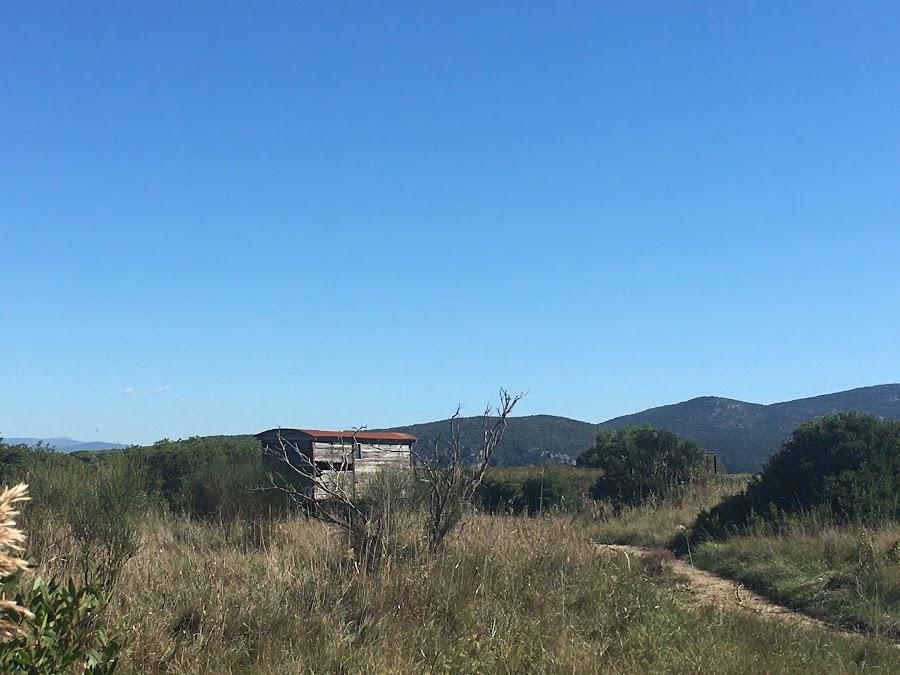 Vecchio carro, rifugio per birdwatching, Bocca D'Ombrone, Parco naturale della Maremma
