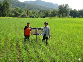 Photo: Mrs. Chanraem Phosee (left) , Naklam village, Namkai sub district, Nam Pad district, Uttaradit province with Mr, Ars Ponhet (right), Director, VTDC Uttaradit