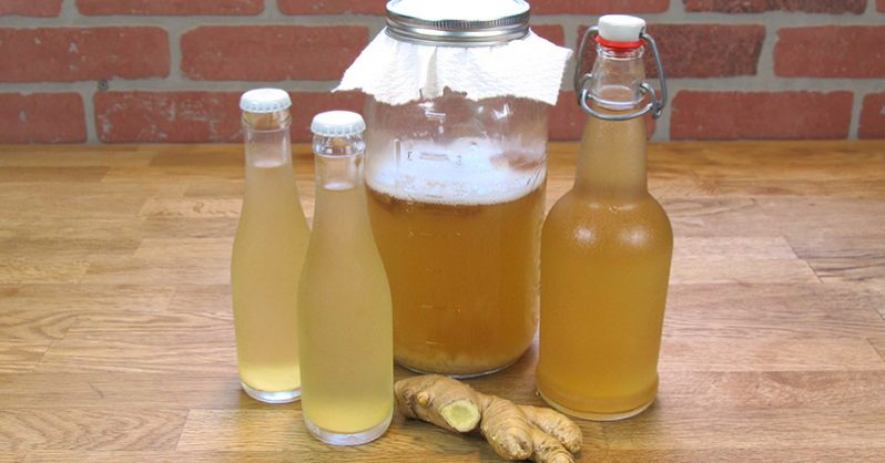 Ginger Tea: the Healthiest Drink to Burn Fat and Eliminate Bloating