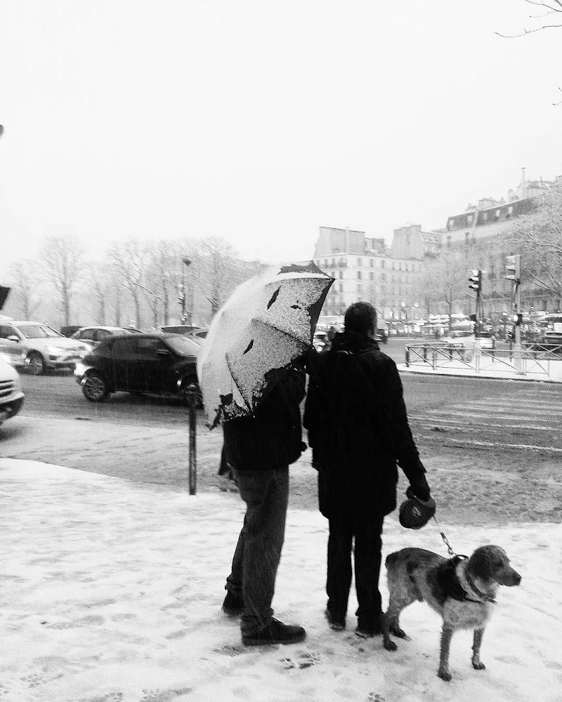 La neve a Parigi di alessiamalara