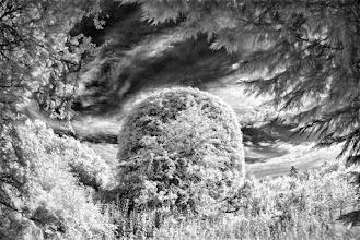 Photo: 'The Secret Place'  © Clive Haynes
