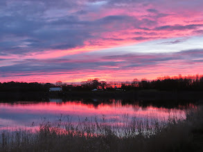 Photo: Priorslee Lake Rather startling sunrise: very quickly faded and we did not get the rain or the wind that 'red sky in the morning' is supposed to predict. (Ed Wilson)