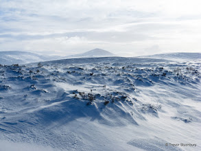 Photo: Mount Keen and blowing fresh snow