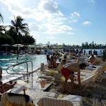 Spa Standard Hotel in Miami, Florida, United States