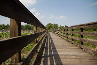 Photo: Wakodahatchee Wetlands Pathway @ Wakodahatchee Wetlands, FL - http://photo.leptians.net
