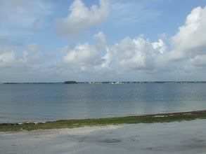 Photo: after the aquarium we went to Honeymoon Island to go to the beach.  This was on the bay side.