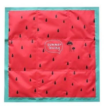 watermelon冰袋