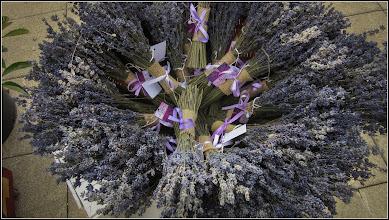 Photo: Lavandă ( Lavandula angustifolia) - din expozitia decor organizata cu ocazia Festivalului International de Teatru - 2017.09.09