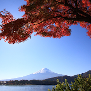 Country Mount Fuji HD Themes
