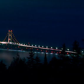 Mackinac Bridge from the Upper Peninsula by Gary Poulsen - Novices Only Landscapes ( tree silhouette, tree, night lights, silhouette, bridge, night, lights )