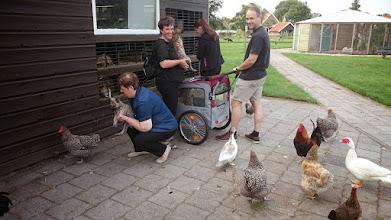 Photo: socialiseren op de kinderboerderij