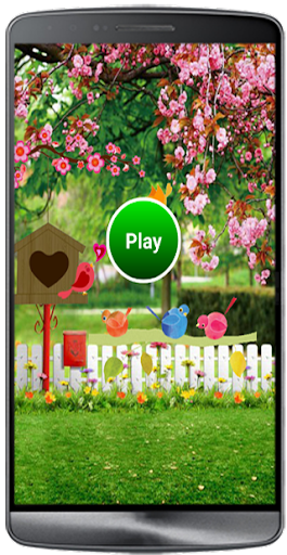 Bird land Game