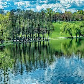 Trees and shadows by Radu Eftimie - City,  Street & Park  City Parks ( bucharest, park of youth, trees, lake, romania, shadows,  )