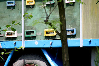 Photo: Day 79 - Bee Keeping Trailer #2