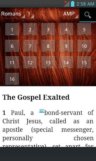 Bible AMP, Amplified Bible (English)  screenshots 13