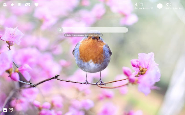 Floral Wallpapers & Flower Background New Tab