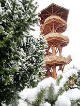 Photo: Wooden tower rising above the pines and snow at Cox Arboretum in Dayton, Ohio.