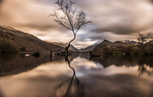 Lone tree by Octavian Oprea - Landscapes Waterscapes ( water, mountain, tree, waterscape, nd, long exposure, lonely,  )