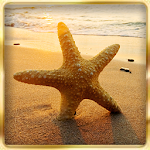 Ocean Beach : Hidden Object Icon