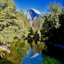 Reflection of Half Dome by Santford Overton - Landscapes Mountains & Hills ( landscapes, sky, mountains, reflections, trees, water, places, blue, light, hills, autumn, river, travel, photography )